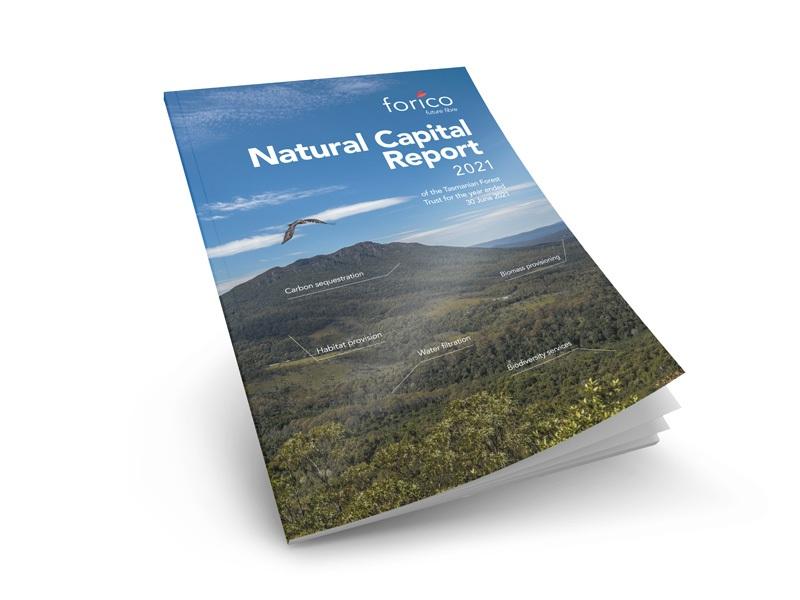 Natural Capital Report 2021